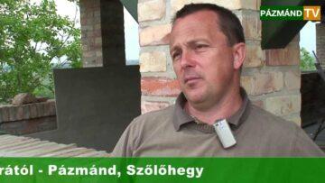 2. Biobor Fesztivál és Bálint Borárium megnyitó! – Pázmánd – 2013.