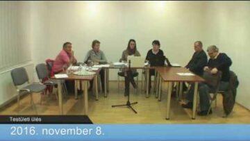 2016. november 8. – Testületi ülés – 19:00