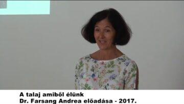 2020. november 6. – Pázmánd TV – Teljes adás