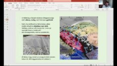 Pázmándon is lehetett érezni a földrengéseket – A szakértő válaszol –  2021.