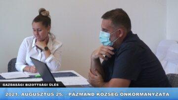 2021. augusztus 25. – Gazdasági Bizottsági ülés – Pázmánd